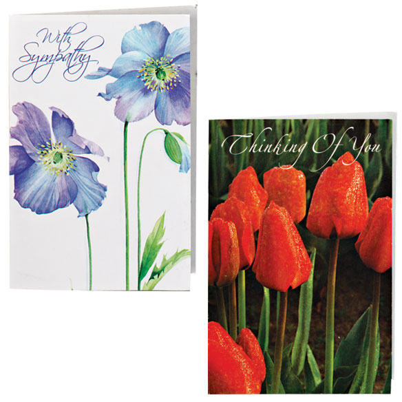 Encouragement And Sympathy Cards - Set Of 24 - View 3