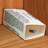 Outdoor - Spider Traps - Set Of 6