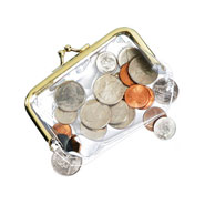 Values under $4.99 - Clear Plastic Coin Purse