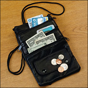 Travel Security Purse