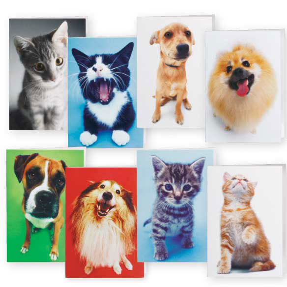 Dog And Cat Blank Note Cards - 24 Pack