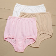 Undergarments - Colored Banded Leg Cotton Panty 3 Pair
