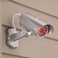 Home - Mock Security Camera