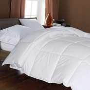 Bedding & Accessories - Microfiber Down Alternative Comforter