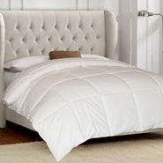 Bedding & Accessories - 100% Cotton White Goose Down and Feather Comforter