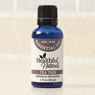 Respiratory Health - Healthful™ Naturals Tea Tree Essential Oil, 30 ml